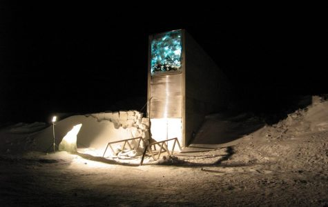 Water Damages Doomsday Seed Vault