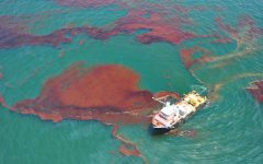 Oil Spill Damages China East Sea