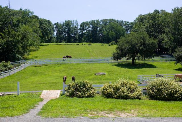 Fuller+Horse+Facility.+Credit%3A+Facebook.
