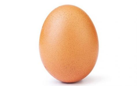 Anonymous Egg Takes Over Instagram