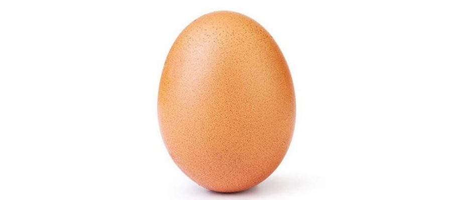 Anonymous+Egg+Takes+Over+Instagram