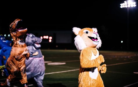 Wildest Cats Kick Off Spirit Season