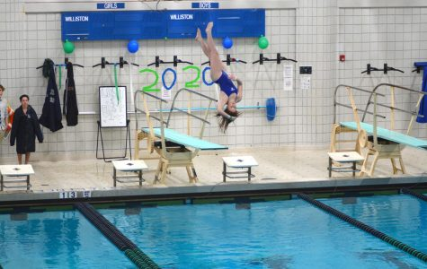 Swimming and Diving Makes Historic Splash, Takes Championship